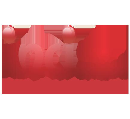 inci1